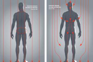 EMF impact Human body